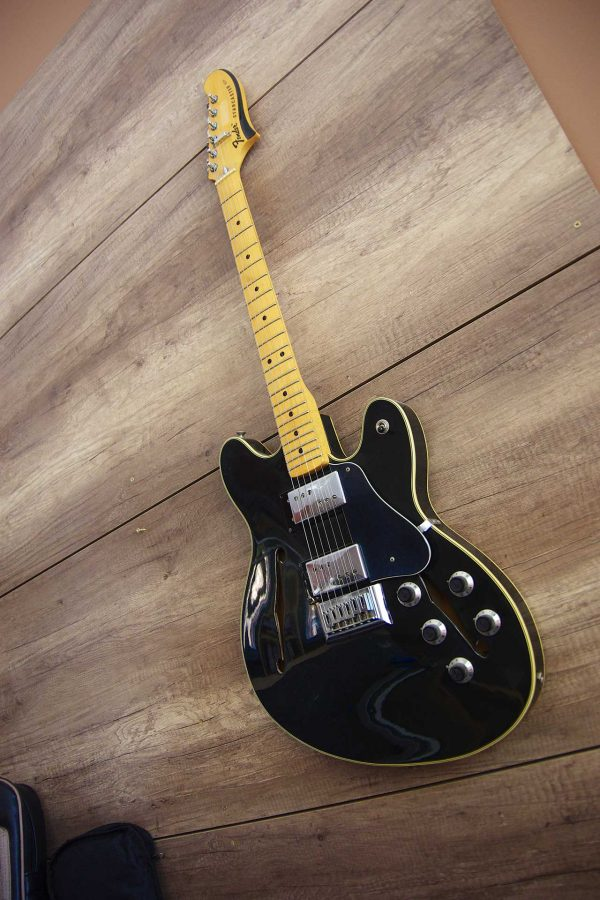 DNG-guitares-fender-starcaster-1974-IMGP3488